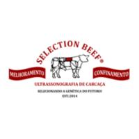 selection beef